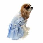 View Image 1 of Dorothy Dog Costume Dress - Blue