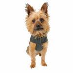 View Image 4 of Double Diamond Dog Coat - Royal Blue