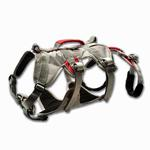 View Image 2 of DoubleBack Dog Harness by RuffWear - Graphite Gray
