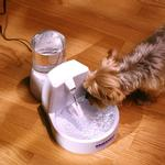 View Image 2 of Drinkwell Original Pet Fountain