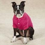 View Image 1 of Blooming Brights Dog Polo - Raspberry