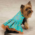 View Image 1 of Blooming Brights Dot Woven Dog Dress