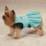 View Image 2 of Blooming Brights Dot Woven Dog Dress
