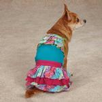 View Image 3 of East Side Collection Confetti Ruffle Dog Tank - Bluebird