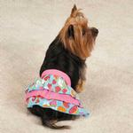 View Image 1 of Fruit Frenzy Ruffle Dog Skirt