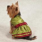 View Image 2 of Holiday Shimmer Dog Dress - Green