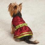View Image 1 of Holiday Shimmer Dog Dress - Red