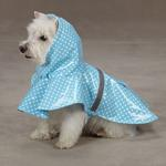 View Image 1 of Polka Dot Rain Jacket - Blue