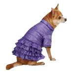 View Image 2 of Ruffle Dog Parka - Ultra Violet