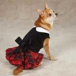 View Image 1 of Yuletide Tartan Dog Dress