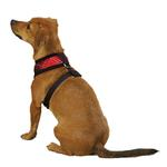 View Image 2 of Yuletide Tartan Dog Harness