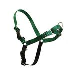 View Image 1 of Easy Walk Nylon Harness by Premier - Green