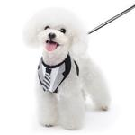 View Image 1 of EasyGo Necktie Dog Harness by Dogo
