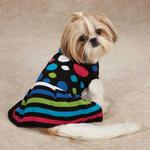 Electric Knit Dog Sweater Dress