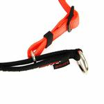 View Image 3 of EzyDog Checkmate Limited-Slip Dog Collar - Orange