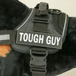 View Image 1 of EzyDog Convert Harness Custom Side Patches - Tough Guy