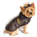 View Image 2 of Faux Leather Brown Bomber Dog Coat - Brown Trim