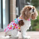 View Image 3 of Fiesta Floral Dog Dress by Doggie Design