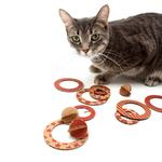 View Image 1 of Flips Eco-Friendly Flying Disc Cat Toy
