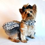 View Image 2 of Floral Dog Dress by Doggie Design - Black and White