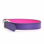 FouFou Reversible Dog Collar - Purple/Fuchsia