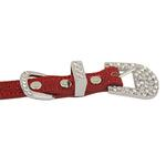 View Image 2 of Foxy Glitz Dog Collar with Letter Strap - Red