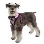 View Image 1 of Frontier Superior Dog Harness by Puppia - Purple
