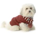 Frosty's Snowflake Dog Scarf - Brick Red