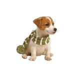 View Image 1 of Frosty's Snowflake Dog Scarf - Sage Green