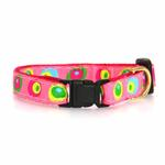 View Image 2 of Funky Pink Circles Cat Collar by Up Country