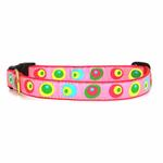 View Image 1 of Funky Pink Circles Dog Collar by Up Country