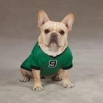 View Image 1 of Game Day Dog Jersey - Shamrock Green