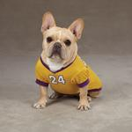 View Image 2 of Game Day Dog Jersey - Yellow