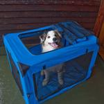View Image 3 of Generation Soft Dog Crates - Blue Sky