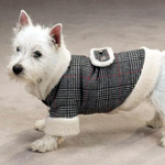 View Image 1 of Glen Plaid Sherpa Dog Coat