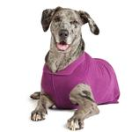 View Image 2 of Gold Paw Fleece Dog Jacket - Eggplant