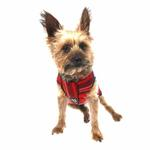 View Image 3 of Gold Paw Fleece Dog Jacket - Red Plaid