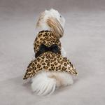 View Image 2 of Gold Print Leopard Dog Dress by Zack & Zoey