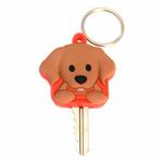 View Image 1 of Golden Retriever Key Cover