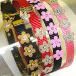 View Image 1 of Gracie Silver on Pink Daisy Dog Leash