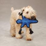 View Image 1 of Grriggles Burlies Tough Dog Toy - Lizard