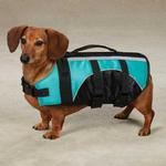 View Image 1 of Guardian Gear Brite Pet Preserver - Bluebird