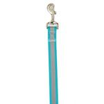 Guardian Gear Brite Reflective Dog Leash - Bluebird