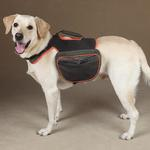 View Image 1 of Guardian Gear Dog Backpack - Green