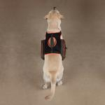 View Image 3 of Guardian Gear Dog Backpack - Green
