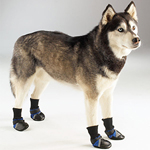 View Image 1 of Guardian Gear Dog Boots - Blue