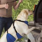 View Image 2 of Guardian Gear Lift & Lead 4-In-1 Dog Harness