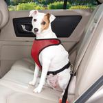 View Image 1 of Guardian Gear Ride Right Dog Car Harness - Crimson