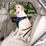 View Image 1 of Guardian Gear Ride Right Dog Car Harness - Navy
