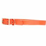 View Image 1 of Guardian Gear Waterproof Dog Collar - Orange